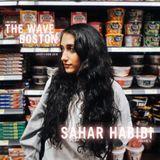 The Wave Boston (2/11) - Sahar Habibi