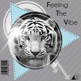 Tigo Rangel - Feeling The Vibe
