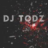 DJ Todz Pop And Chart Mix (January 2017)