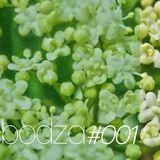 mesterbandi - bodza#001