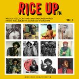 Rice Up FM Vol.1 (Rub a Dub/Roots Culture/Reggae)