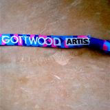 Live @ Gottwood Festival - 11/06/2016