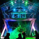 Woodland Soul DJs at Timber Festival