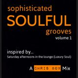 Sophisticated Soulful Grooves Volume 1 (January 2015)