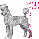 p&c podcast: podcast 30.