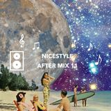 NICESTYLE | AFTER MIX 11 (HNY2016)