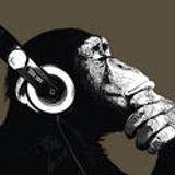 Optimus Podcast #1 - Linus Pryne