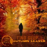 Tino Deep - Autumn Leaves (November 2015 Promo Mix)