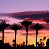 Palm Springs House Mix 2