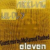 Nibbling Wildly Eleven Guest Mix: Mohamed Rashed