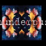 The Best Of Thunderpuss (Barry Harris & Chris Cox)