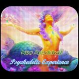 Psychedelic Experience (Live DJ Set)