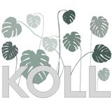 Koll - (220316)