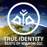 True Identity - Beats of Wisdom 001 (432hz dance music)