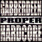 gabberdeen-may contain sheep (noize violation mix)