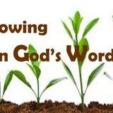 Growing In Gods Word