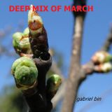 Deep mix of March (13.03.13)