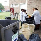 TDTR - 10-05-17 - Daniela López Munain - EcoGrupo Ungs - Estudio de calidad de residuos