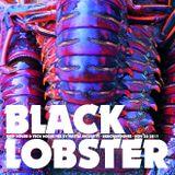 Black Lobster - Deep house & Tech house mix by Mattia Nicoletti - Beachgrooves - November 26 2017