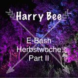 Harry Bee live at E-Bash - 24.10.15