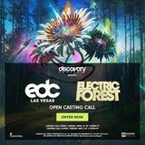 EDC 2017 & Electric Forest Discovery Project Mix