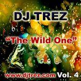 DJ Trez - The Wild One