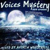 Andrew Wonderfull - Voices mystery 009 episode