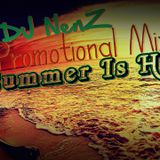 DJ NenZ - Summer Is Here ( Promotional Mix May 2014)