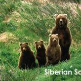 Siberian Soul vol 26