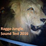 Ragga-Jungle Sound Test 2016