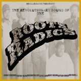 The Revolutionary  Sound Of The Roots Radics