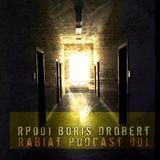 [RP001] Rabiat Podcast 001 - Komplexität by Boris Drobert