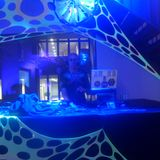 dj bliepertronic psychedelic rockchill set trippedelic venlo 24-3-18