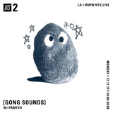 Gong Sounds w/ PRMTVO - 11th December 2017
