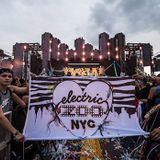 David Guetta @ Electric Zoo, United States 2014-08-29