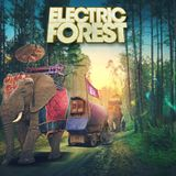 YOOKiE @Electric Forest Weekend 1 July 24, 2017