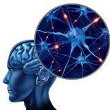 Tér-Idő: Sokarcú betegség - a szklerózis multiplex, 1. rész