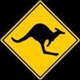 Kangaroo's war