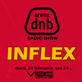 Arena dnb radio show - vibe fm - mixed by INFLEX - February 24th 2015 - DRAGOBETE