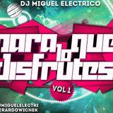 19. Dj Miguel Electrico