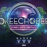 Mixmaster Morris @ Okeechobee Festival pt1