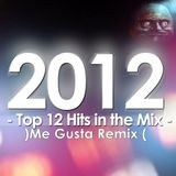 TOP 12 HITS IN THE ELECTRO-MIX (2k12 - Me Gusta Remix)