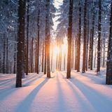 Winterend.