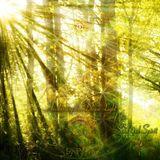 PsyTo - Awakening the Divine Light of the Soul and Spirit