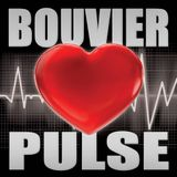 BOUVIER PULSE