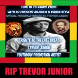 DJ EMPRESS ANJAHLA TRIBUTE TO THE LATE TREVOR JUNIOR JANUARY 27, 2016.mp3
