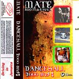 DJ Mate Dancehall 2000 Vol 3 Ragga side