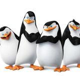 Los Pingüinos de Villa Revol Capítulo 26!