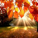 Mr. Tony Dennis - Autumn Solstice