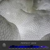 #056 - PERFECT SKIN (2014)